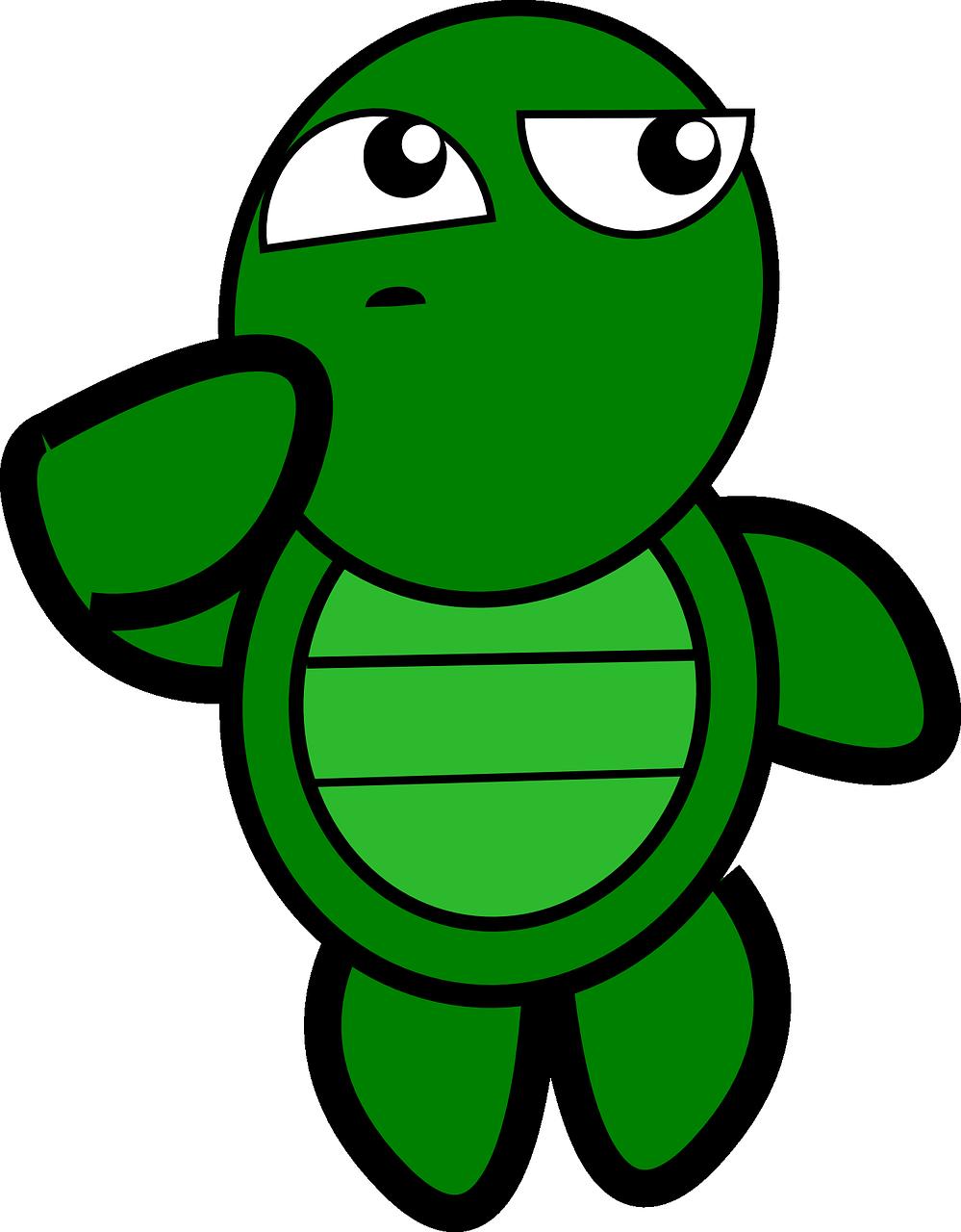 turtle-152082_1280